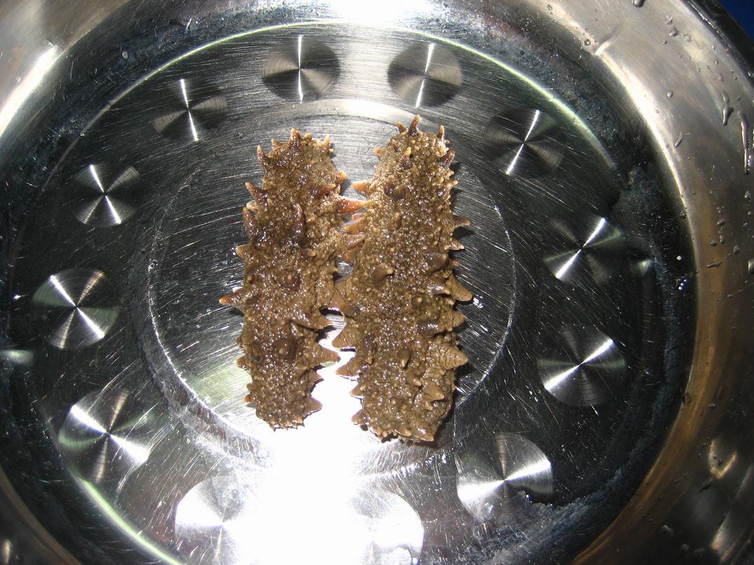 烟台海参,捕捞晾晒全程图片记录